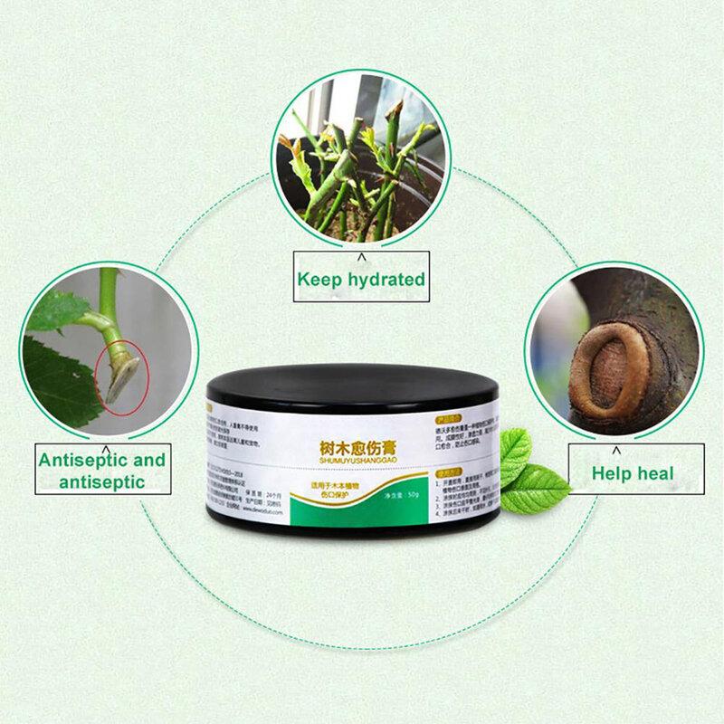 50g 식물 치유 실란트 분재 상처 치유 에이전트 나무 가지 치기 붙여 넣기