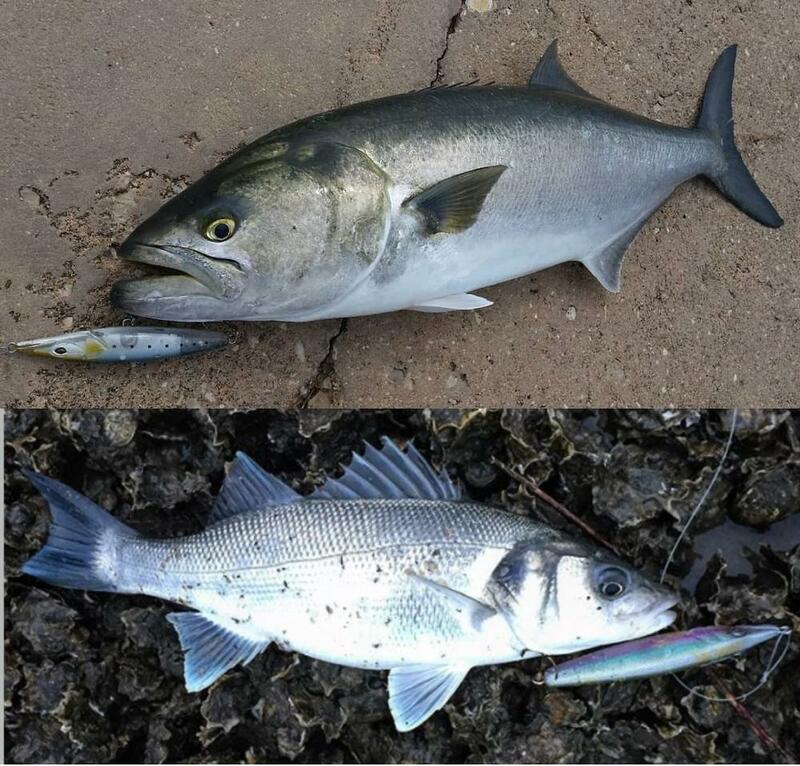 Fangbait ตกปลาเหยื่อ Tackle 2021ดินสอ Topwater Lures Stickbaits Asturi น้ำเค็ม Lure 110มม.130มม.สำหรับ Bonitos Seabass เหยื่อ
