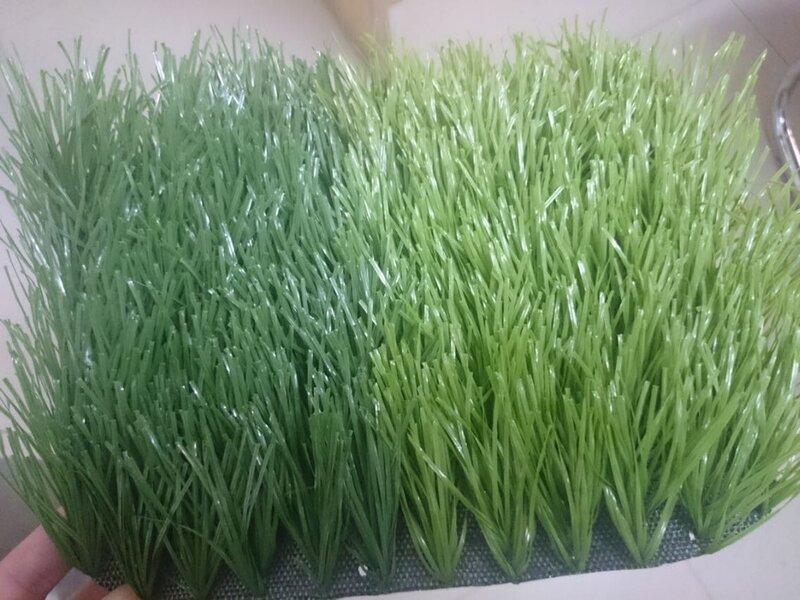مجال العشب الاصطناعي لكرة العشب ل الصالات