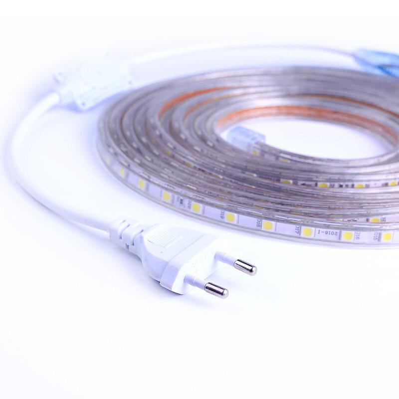 SMD 5050 AC220V tira de iluminación LED Flexible 60leds/m Led resistente al agua cinta de luz LED con enchufe de alimentación de 1M/2M/3M/5M/6M/8M/9M/10M/15M/20M
