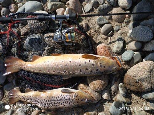 1pc Countbass Minnow Hard Lure 57 มม.,ปลาเทราท์ตกปลาเหยื่อเบสน้ำจืด Wobblers