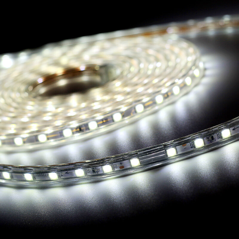 SMD 5050 AC220V LED 스트립 유연한 빛 60leds/m 방수 Led 테이프 전원 플러그 1M/2M/3M/5M/6M/8M/9 10M/15M/20M