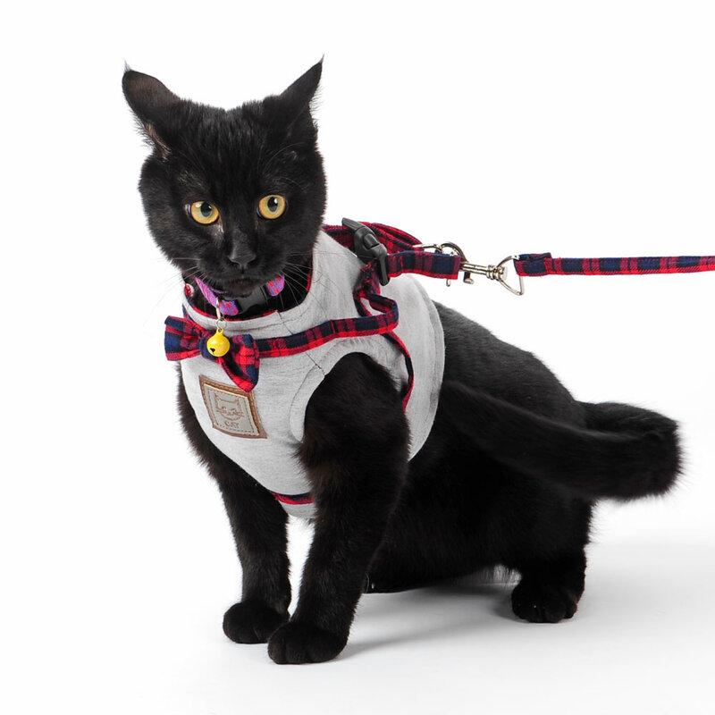 Hoopet-حزام من النايلون للقطط ، قابل للتعديل ، ناعم ، مسامي ، شبكي ، للجرو ، الكلب ، القط ، مجموعة المقود