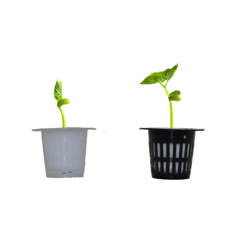 Soilless Hydrokultur Gemüse Kindergarten Töpfe Kindergarten Schwamm Blume Samen Anbau Soilless Anbau System Samen Trays