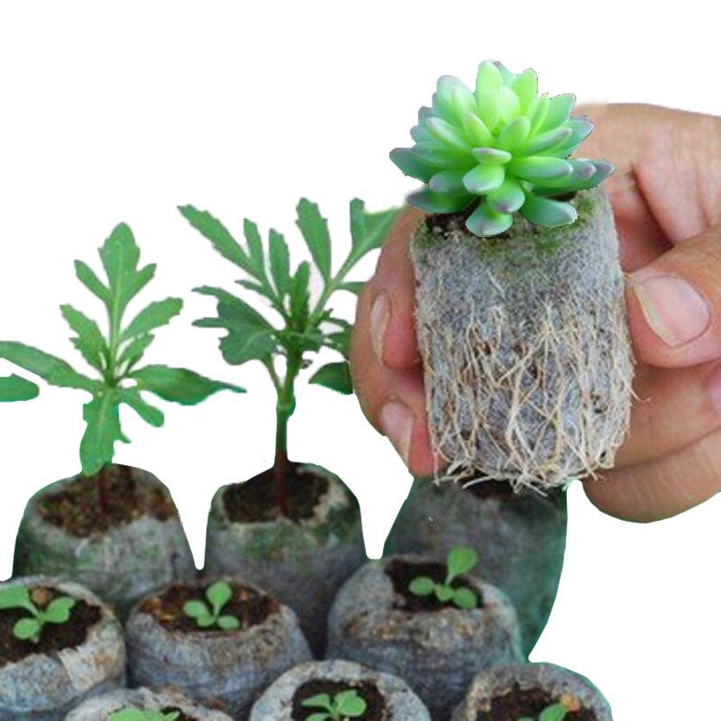 أكياس حضانة للزراعة ، أكياس غير منسوجة قابلة للتحلل ، بذور زهور صديقة للبيئة ، 50 قطعة