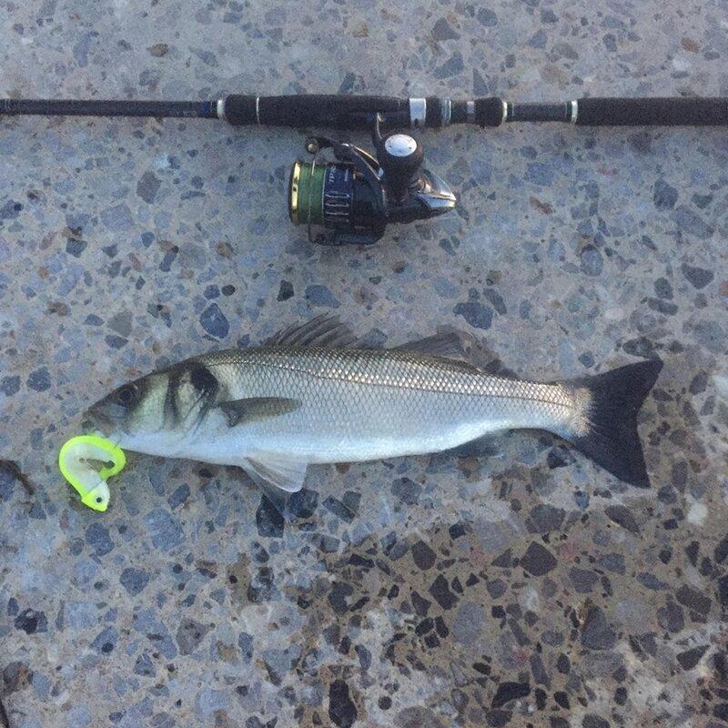 ตกปลา2021 Drop Shipping เหยื่อสีดำ Minnow 12G 25G 40G 60G Fishing Tackle สำหรับ Seabass สีดำ minnow Shad Lure เหยื่อประดิษฐ์