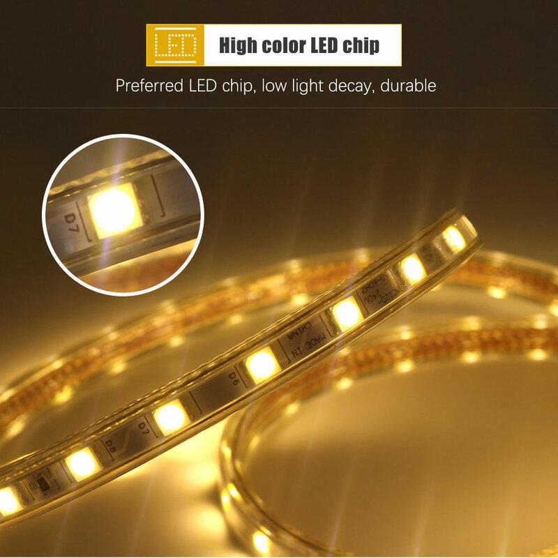 Tira de luces LED resistente al agua IP67 para interiores y exteriores, luz flexible con enchufe europeo, SMD 5050, AC220V, 60led/m, 1M, 2M, 3M, 5M, 10M, 15M